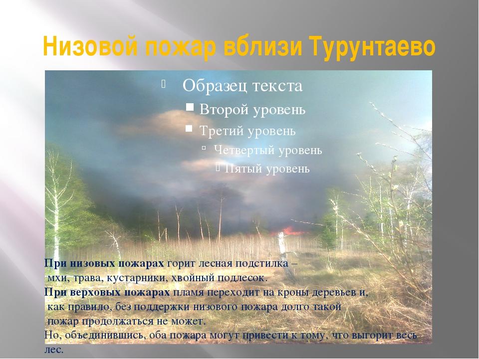 Низовой пожар вблизи Турунтаево При низовых пожарах горит лесная подстилка –...