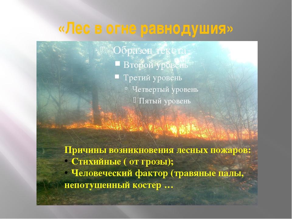 «Лес в огне равнодушия» Причины возникновения лесных пожаров: Стихийные ( от...