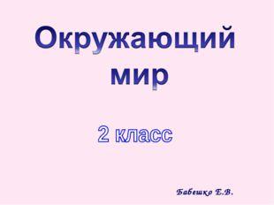 Бабешко Е.В.