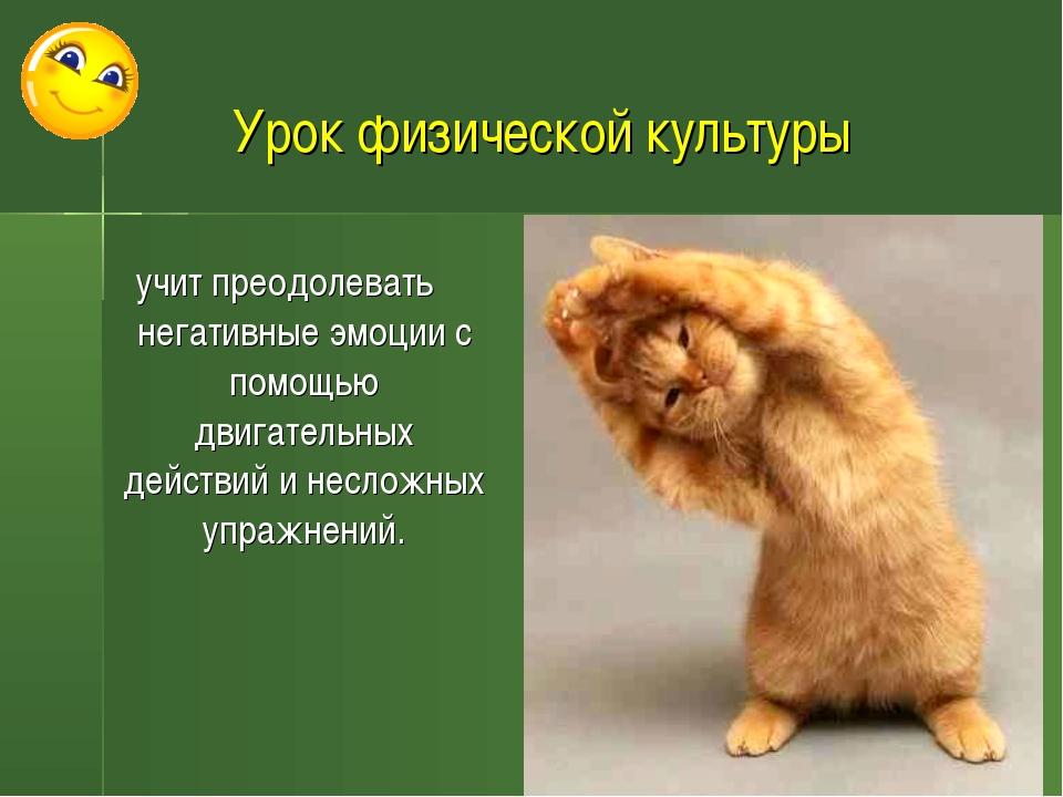 Урок физической культуры учит преодолевать негативные эмоции с помощью двигат...