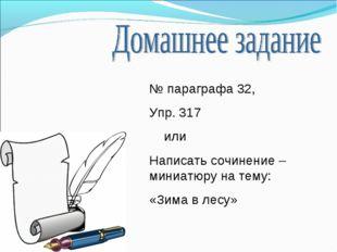 № параграфа 32, Упр. 317 или Написать сочинение – миниатюру на тему: «Зима в