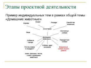 Этапы проектной деятельности Пример индивидуальных тем в рамках общей темы «Д