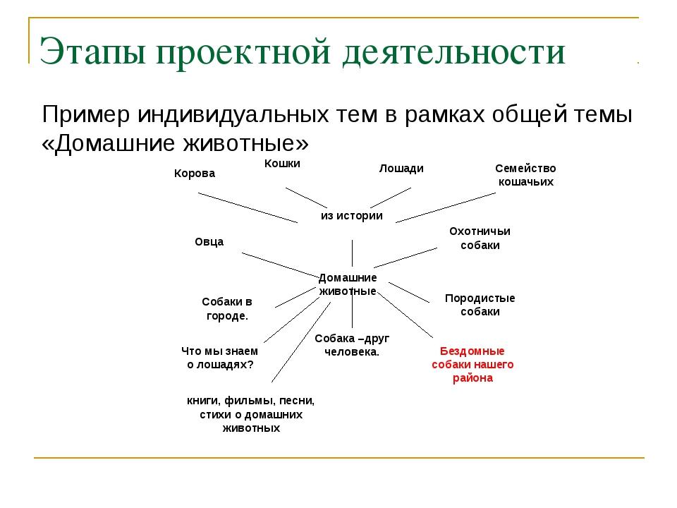 Этапы проектной деятельности Пример индивидуальных тем в рамках общей темы «Д...