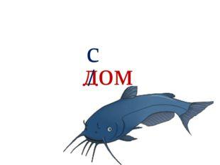 дом / с