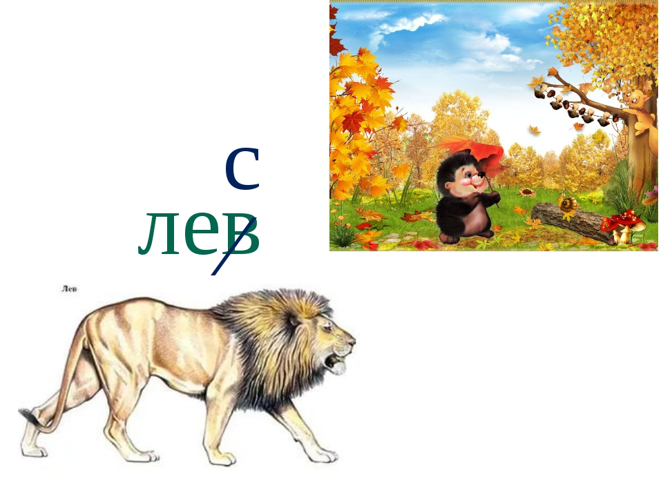 лев ∕ с