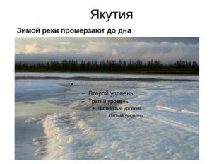 Якутия Зимой реки промерзают до дна