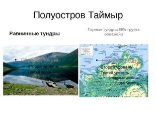 Полуостров Таймыр Равнинные тундры Горные тундры.80% грунта обнажено