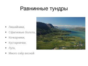 Равнинные тундры Лишайники, Сфагновые болота, Кочкарники, Кустарнички, Луга,