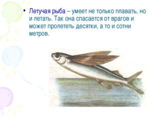Летучая рыба – умеет не только плавать, но и летать. Так она спасается от вра
