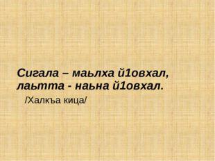 Сигала – маьлха й1овхал, лаьтта - наьна й1овхал. /Халкъа кица/