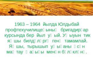 1963 – 1964 йылда Юлдыбай профтехучилищеһының бригадирҙар курсында бер йыл у