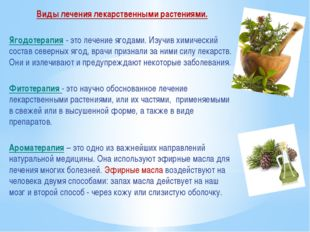 Виды лечения лекарственными растениями. Ягодотерапия - это лечение ягодами. И