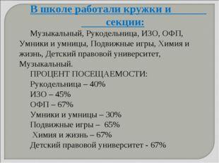 В школе работали кружки и секции: Музыкальный, Рукодельница, ИЗО, ОФП, Умники
