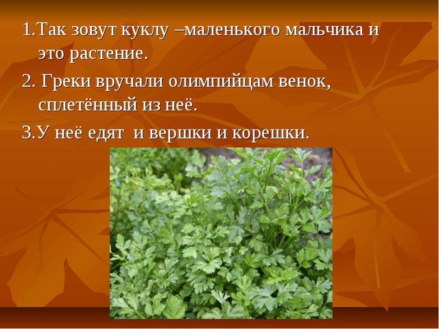 1.Так зовут куклу –маленького мальчика и это растение. 2. Греки вручали олимп...