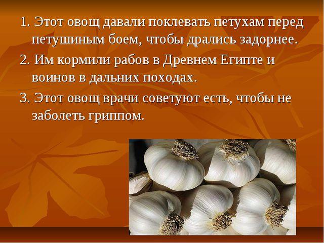 1. Этот овощ давали поклевать петухам перед петушиным боем, чтобы дрались зад...