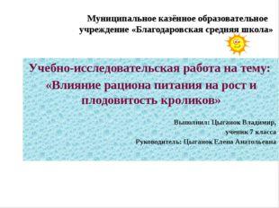 Учебно-исследовательская работа на тему: «Влияние рациона питания на рост и п