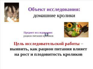 Объект исследования: домашние кролики Предмет исследования: рацион питания кр