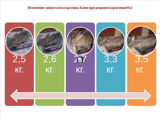 Изменение живого веса кролика Бони при рационе кормления№2