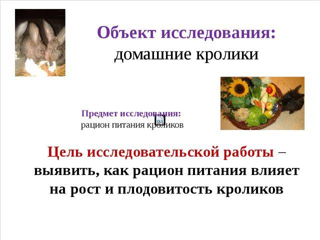 Объект исследования: домашние кролики Предмет исследования: рацион питания кр...
