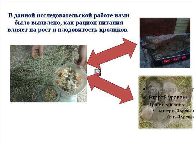 В данной исследовательской работе нами было выявлено, как рацион питания вли...