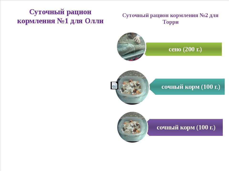 Суточный рацион кормления №1 для Олли Суточный рацион кормления №2 для Торри