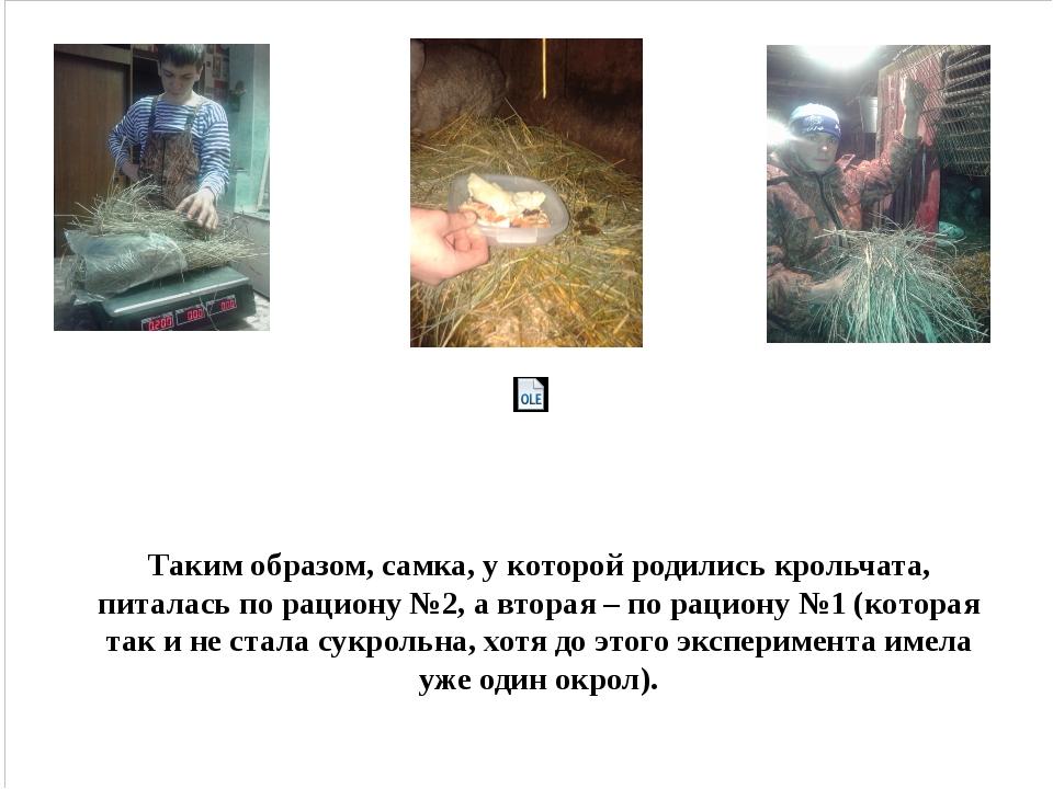 Таким образом, самка, у которой родились крольчата, питалась по рациону №2,...