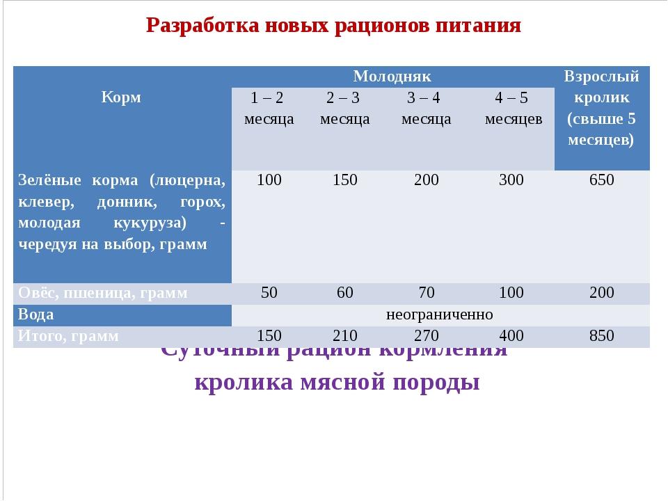 Разработка новых рационов питания Суточный рацион кормления кролика мясной п...