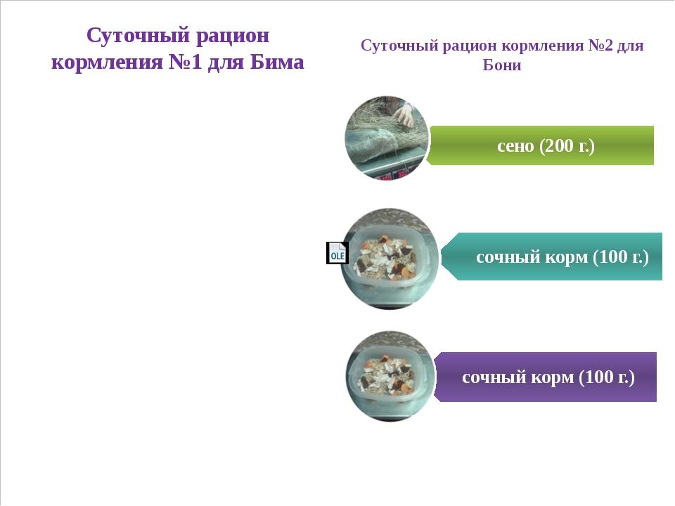 Суточный рацион кормления №1 для Бима Суточный рацион кормления №2 для Бони