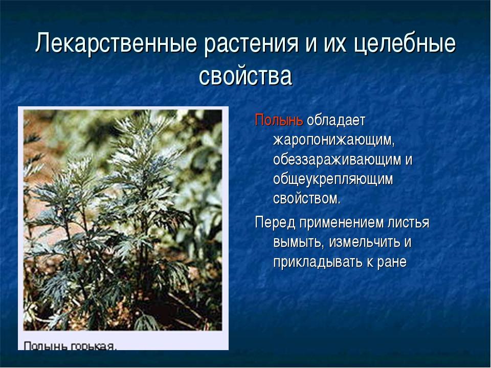 Лекарственные растения и их целебные свойства Полынь обладает жаропонижающим,...
