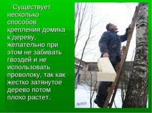 Существует несколько способов крепления домика к дереву, желательно при этом