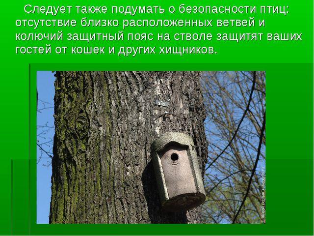 Следует также подумать о безопасности птиц: отсутствие близко расположенных...