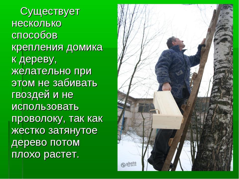 Существует несколько способов крепления домика к дереву, желательно при этом...