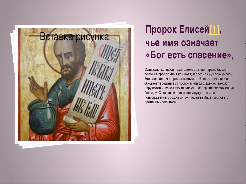Пророк Елисей[1], чье имя означает «Бог есть спасение», Однажды, когда он пах...