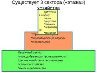 Существует 3 сектора («этажа») хозяйства Вторичный сектор: обрабатывающие отр