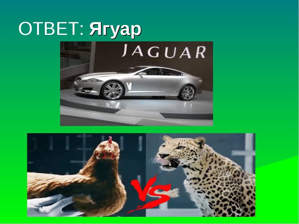 ОТВЕТ: Ягуар