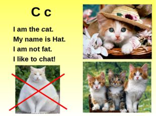 C c I am the cat. My name is Hat. I am not fat. I like to chat!