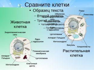 Сравните клетки