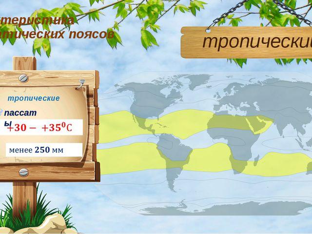 Характеристика климатических поясов тропический тропические пассаты