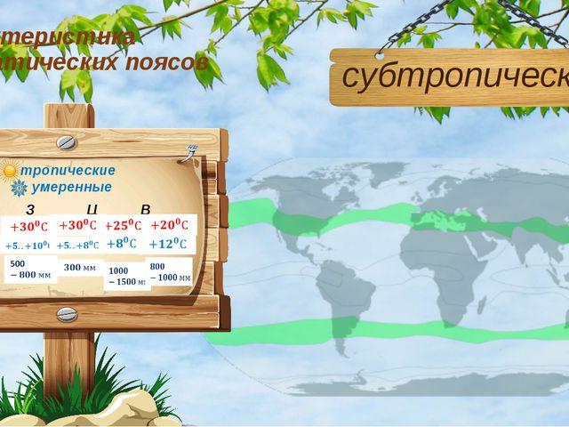 Характеристика климатических поясов субтропический З Ц В М
