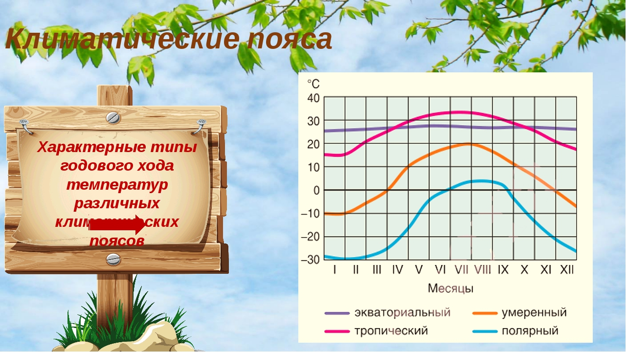 Характерные типы годового хода температур различных климатических поясов Клим...