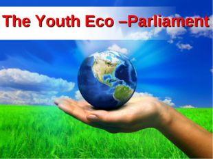 Lesson theme:The Youth Eco –Parliament The Youth Eco –Parliament