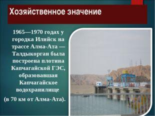 Хозяйственное значение 1965—1970 годах у городка Илийск на трассе Алма-Ата —