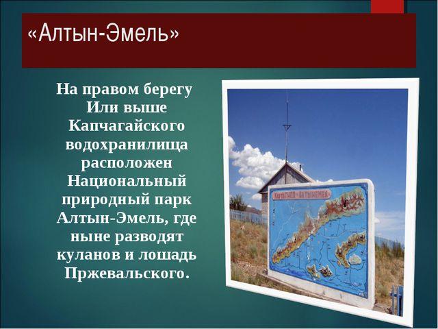 «Алтын-Эмель» На правом берегу Или выше Капчагайского водохранилища расположе...