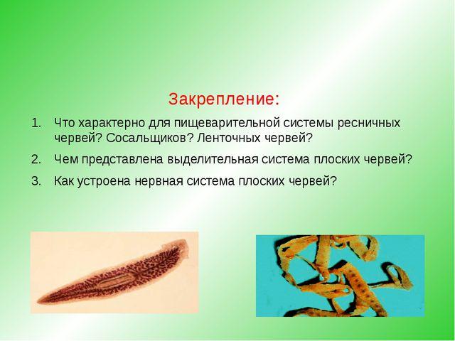 Закрепление: Что характерно для пищеварительной системы ресничных червей? Со...