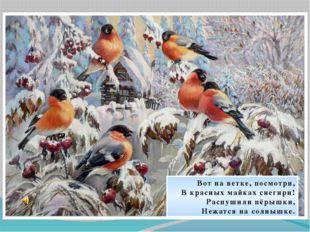 Вот на ветке, посмотри, В красных майках снегири! Распушили пёрышки, Нежатся