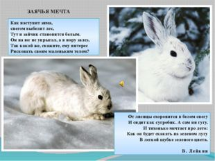 Как наступит зима, снегом выбелит лес, Тут и зайчик становится белым. Он на ю