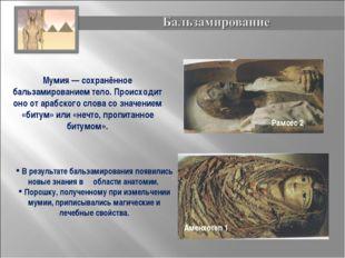 Мумия— сохранённое бальзамированием тело. Происходит оно от арабского слова