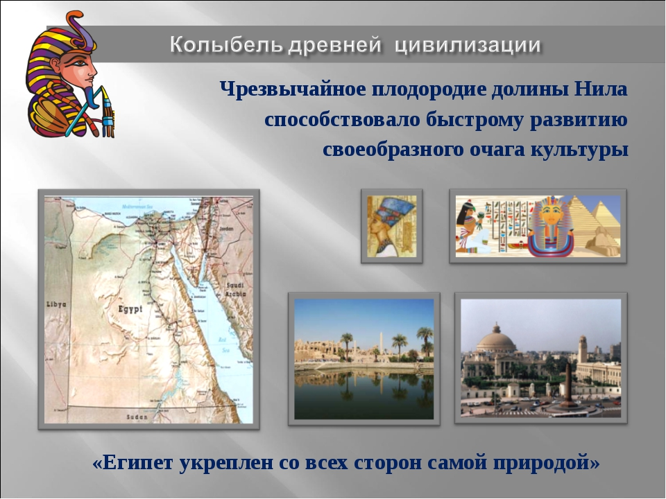Чрезвычайное плодородие долины Нила способствовало быстрому развитию своеобра...