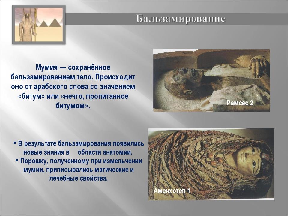 Мумия— сохранённое бальзамированием тело. Происходит оно от арабского слова...