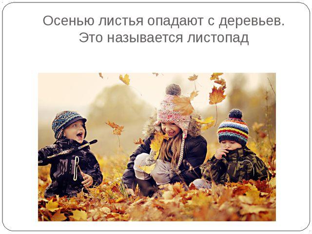 Осенью листья опадают с деревьев. Это называется листопад